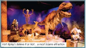 New Packages at Ripley's Believe It or Not