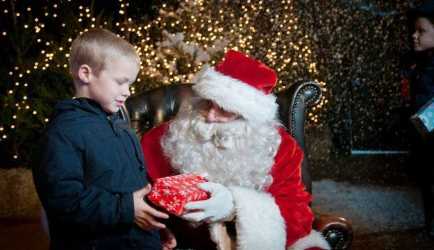 Magical Christmas at The Rare Breeds Centre