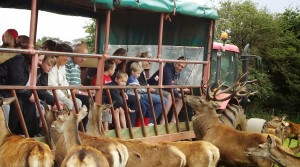 Visit Snettisham Farm Park with your groups in 2014