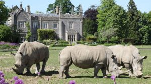 A Wild Day Out! – Great for Gardeners and Animal Lovers