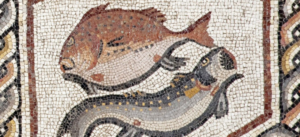 A Roman Mosaic from Lod, Israel