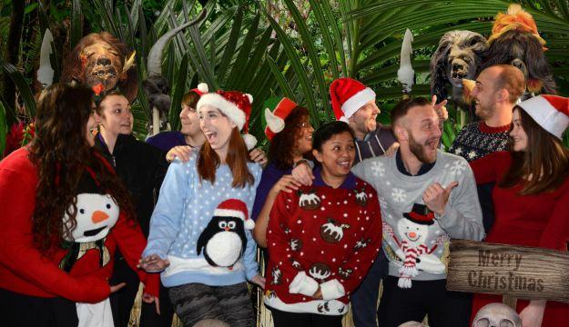 Christmas ripleys