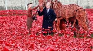 War horse's Joey and Michael Morpurgo at The Tower of London Poppies