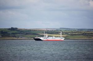 Shannon Ferries2