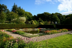 Lily Pond in Walled Garden