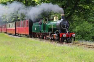 Kirkless Railway 1 (2)