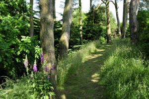 Gardens Path