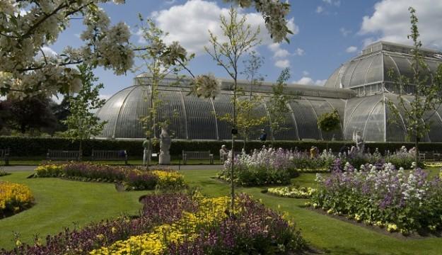 Visit the beautiful Kew Gardens