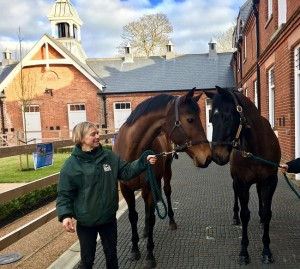 The Cheka (left) and Kingsgate Native (right) in the Rothschild Yard with Sue Molloy