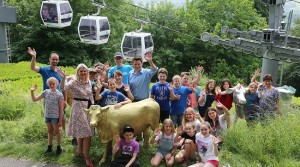 PEAK'S QUIRKY COWS HIT THE HEIGHTS