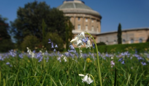 Ickworth House and Parklands