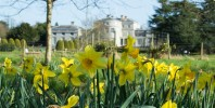 Shugborough's one year anniversary under the National Trust