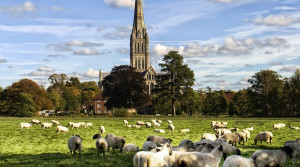 Travel Trade Invited to help put the Spotlight on Salisbury. 21 May VIP Day for Coach and Tour Operators and GTOS