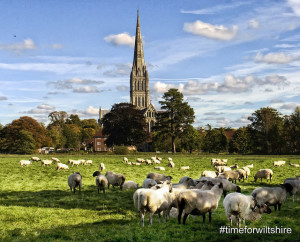 Salisbury Cathedral for trade