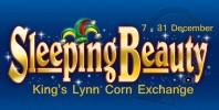 Sleeping Beauty at the Corn Exchange