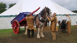 Beamish Museum Agricultural Show 3 (002)