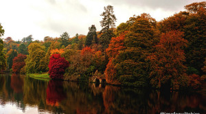 VISITWILTSHIRE Launches Autumn Campaign