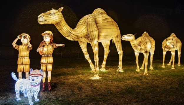 Longleat Festival of Light takes Visitors on a fantastic voyage