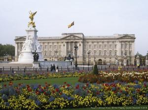Buckingham Palace Wicked Piece