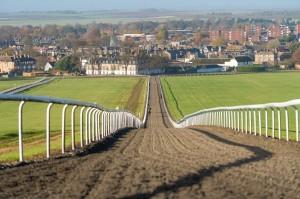 Warren Hill Training Gallops Newmarket