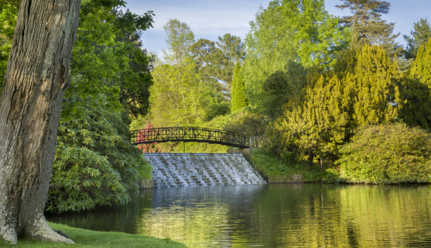 Sheffield Park- the place to be with your groups during 2020…