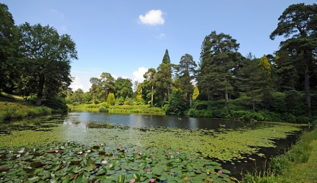 Group Travel Organisers' 2021 Preview at Leonardslee Lakes and Gardens