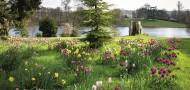 Discover Dorset's best kept secret – Sherborne Castle & Gardens