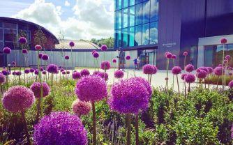 World of Wedgwood Courtyard