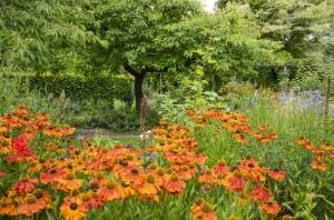 Rose Garden at Barnsdale Gardens