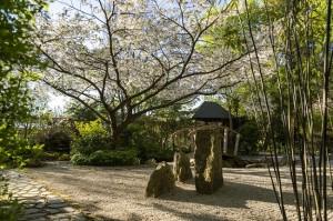 Japanese Garden at Barnsdale Gardens